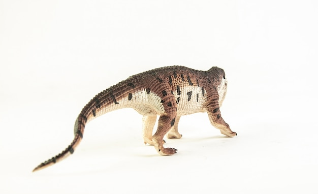 Prestosuchus, dinosauro isolato.