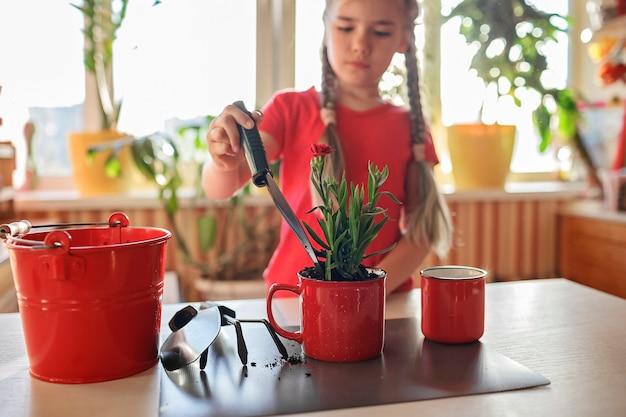 Ragazza preadolescente che ripianta fiori verdi in una tazza rossa con piante verdi in vaso a casa decorazione floreale