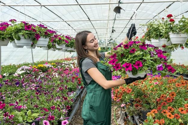 Vivaio femminile grazioso che lavora con i fiori nella bella serra luminosa. primavera