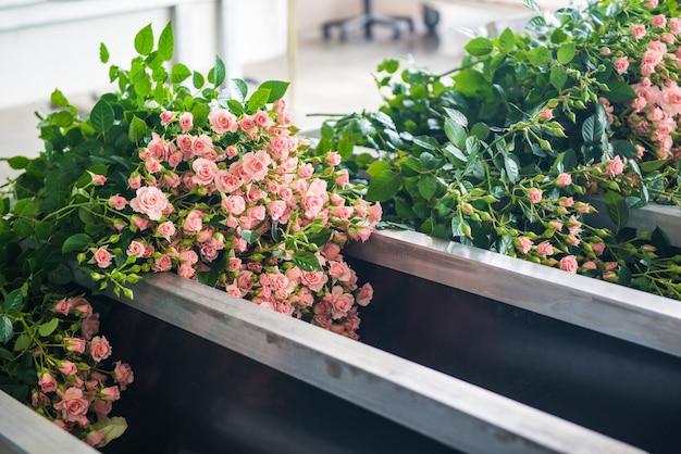 Il processo di smistamento e pulizia dei fiori in serra