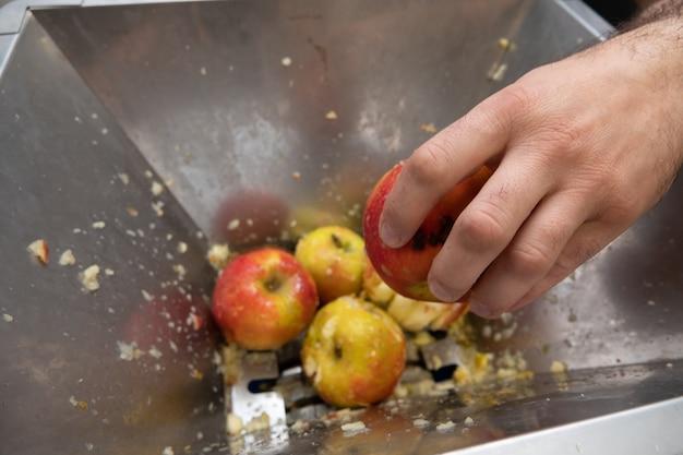 Lavorazione di mele per la produzione di succhi e sidr.