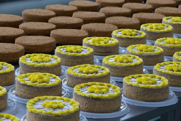 Linea di produzione di torte. molte torte nel negozio culinario. linea di torte e prodotti da forno