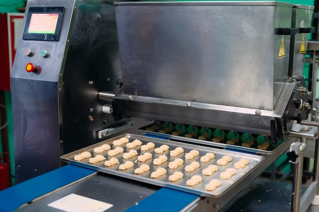 Produzione di biscotti di pasta frolla in uno stabilimento dolciario.