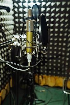 Microfono professionale