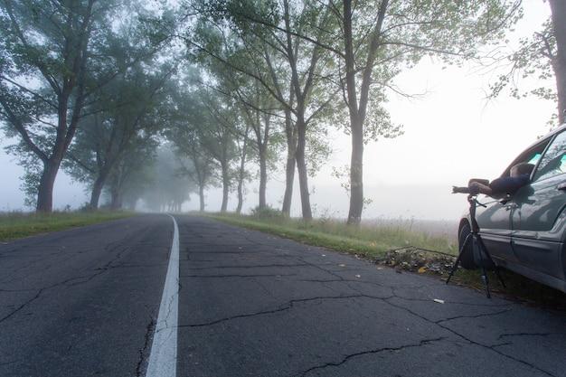 Fotografo professionista che scatta foto dal finestrino di un'auto al mattino presto all'alba. fotografare una strada deserta nella nebbia con alberi secolari lungo la strada