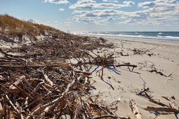Protezione delle dune di sabbia dall'erosione. distruzione delle dune della tempesta