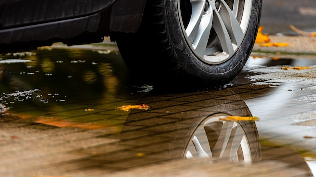 Pozzanghera sul marciapiede con un riflesso della ruota dell'auto e foglie colorate d'autunno