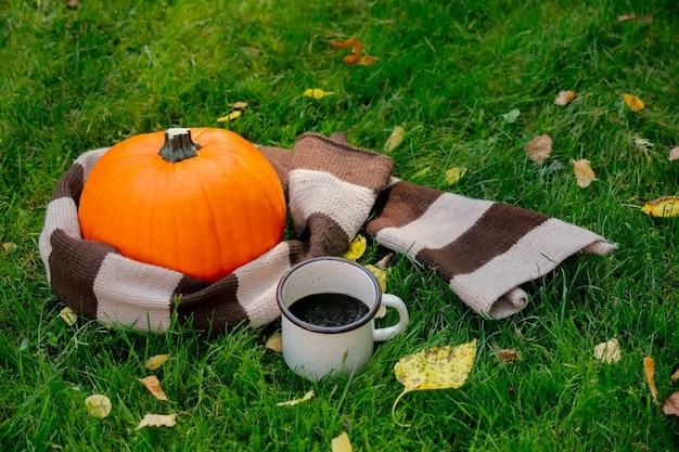 Zucca e tazza di caffè sull'erba verde