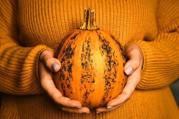Zucca nelle mani di una donna con un accogliente maglione di lana arancione