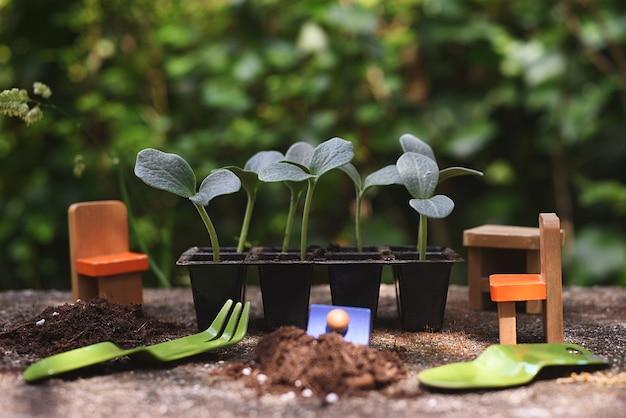 Vivaio di germogli di zucca con strumenti per bambini e giocattoli in legno