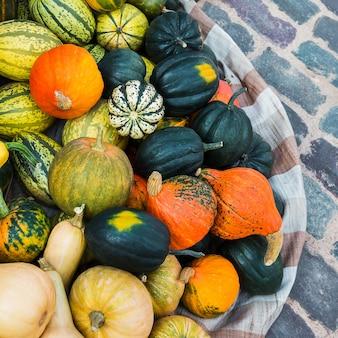 Zucche. assortimento di zucche, zucche. vendemmia autunnale, mercato. Foto Premium