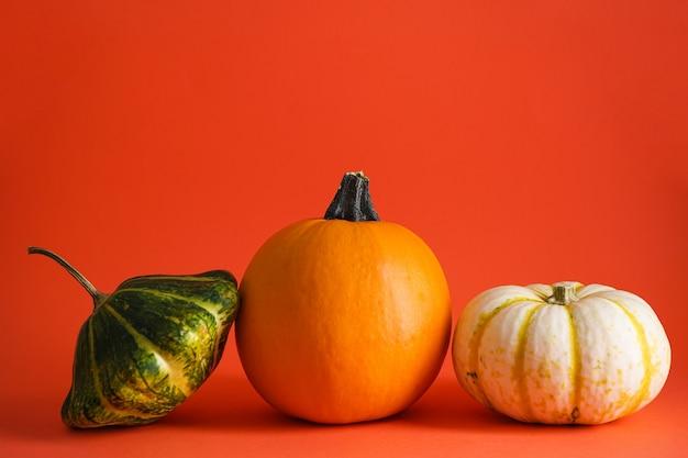 Zucche su sfondo arancione, spazio per il testo. composizione autunnale. concetto di halloween.