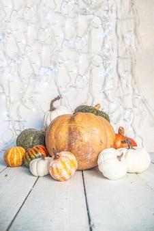 Zucche su legno bianco, con ghirlanda festiva bianca sul muro