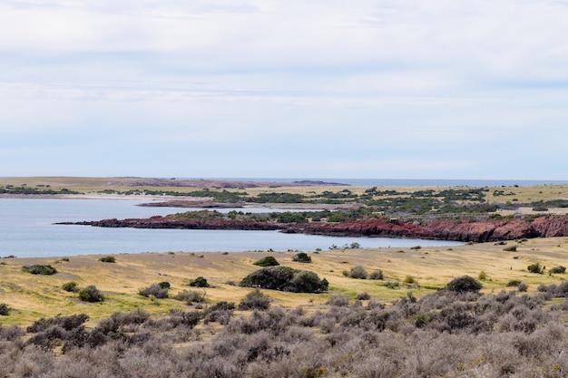 Vista di giorno della spiaggia di punta tombo, paesaggio della patagonia, argentina