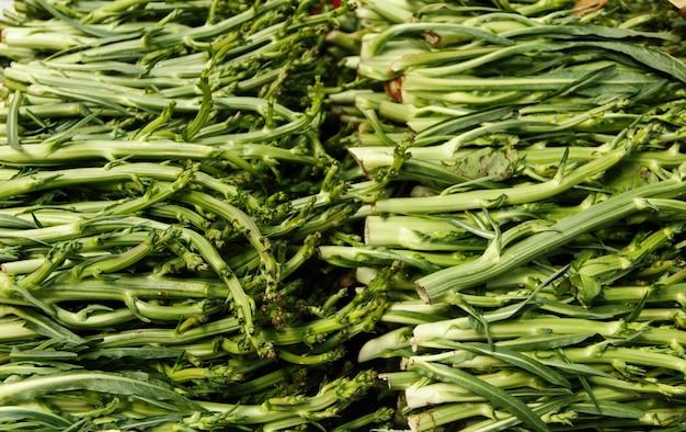 Puntarelle, cicoria di asparagi su un mercato degli agricoltori