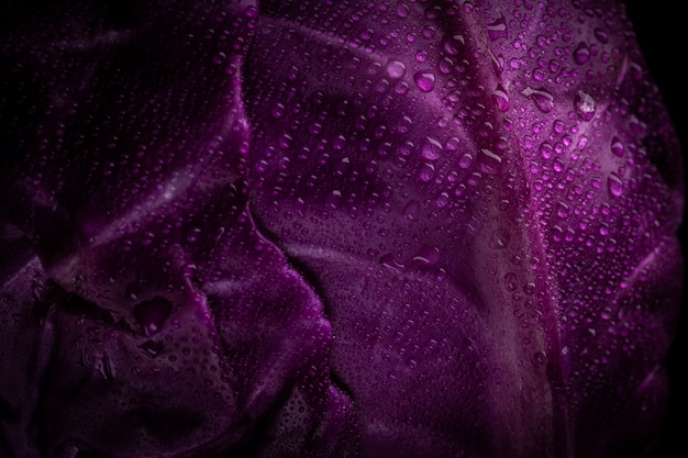 Cavolo viola con gocce d'acqua illuminate su una superficie nera