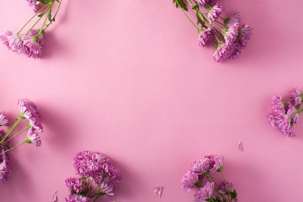 Crisantemo viola e petali