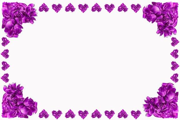 Petali di fiori viola a forma di cuori sulla superficie bianca