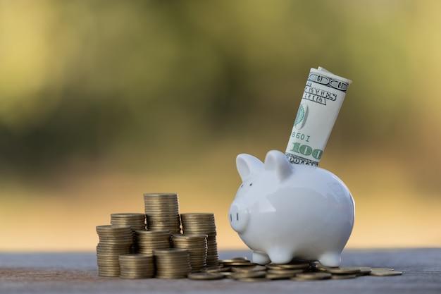 Mettere soldi in dollari in idee salvadanaio per risparmiare denaro
