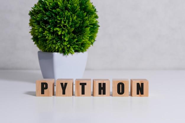 Concetto di parola linguaggio di programmazione python. concetto di qualità.