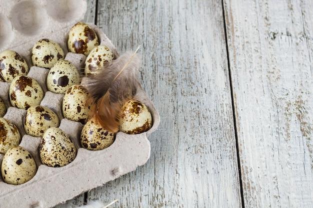 Uova di quaglia in un portauova di cartone su sfondo bianco con piuma