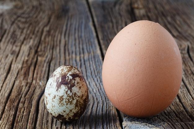 Uova di quaglia e pollo che è meglio