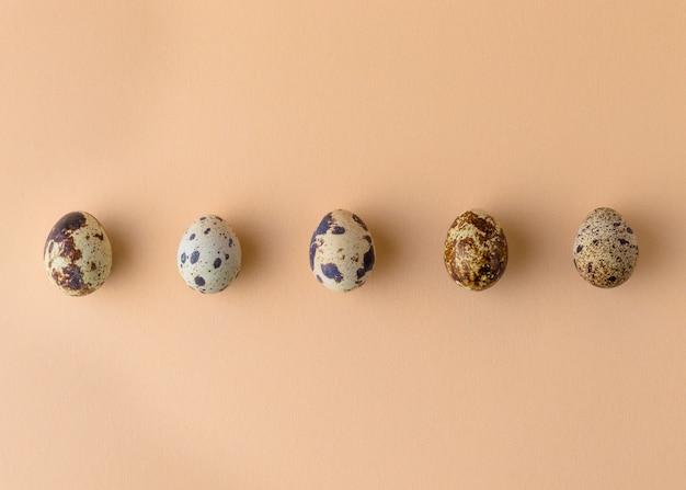 Uova di quaglia disposte in fila isolate su fondo beige