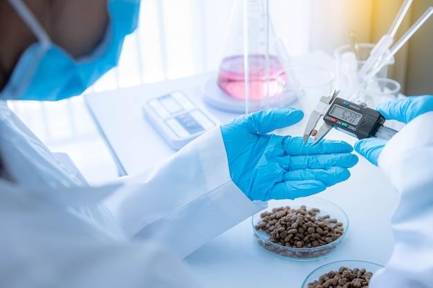 Il personale addetto al controllo qualità ha misurato le dimensioni del cibo per animali domestici. processo di controllo della qualità nell'industria del pet food.