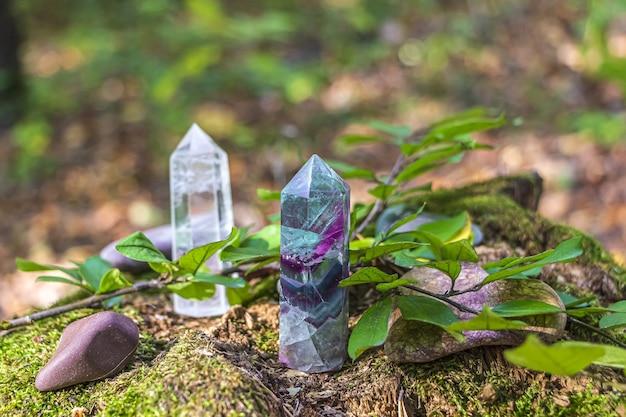 Cristallo di quarzo su ceppo di albero muschioso