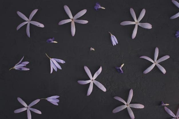 Queens o purple wreath pattern su texture di pietra o roccia colore di sfondo nero.