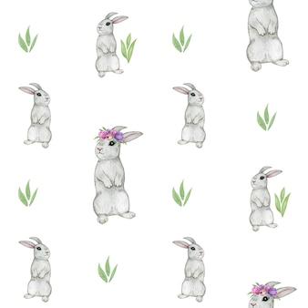 Reticolo senza giunte del coniglio, coniglietto dell'acquerello
