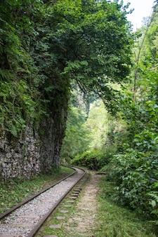 I binari della ferrovia sulle vecchie traversine di legno consumate richiedono riparazioni urgenti. la ferrovia a scartamento ridotto lungo il crinale. ferrovia in montagna.