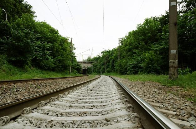 Tra i binari di una ferrovia nella foresta con traversine di cemento.