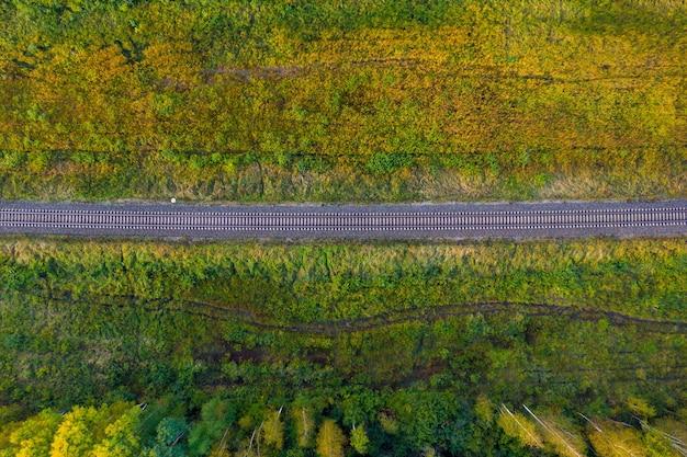 Linea ferroviaria attraverso la foresta di autunno, vista aerea dall'alto in basso