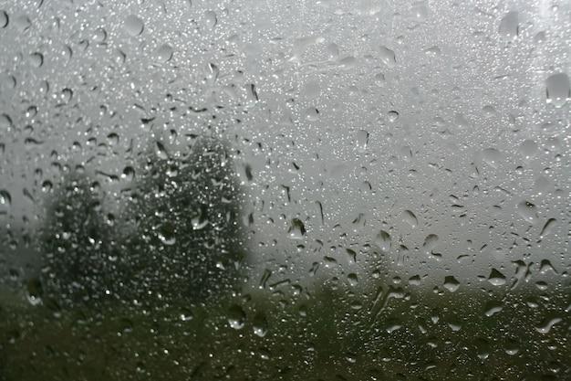 Gocce di pioggia su vetro e sfocatura della silhouette degli alberi