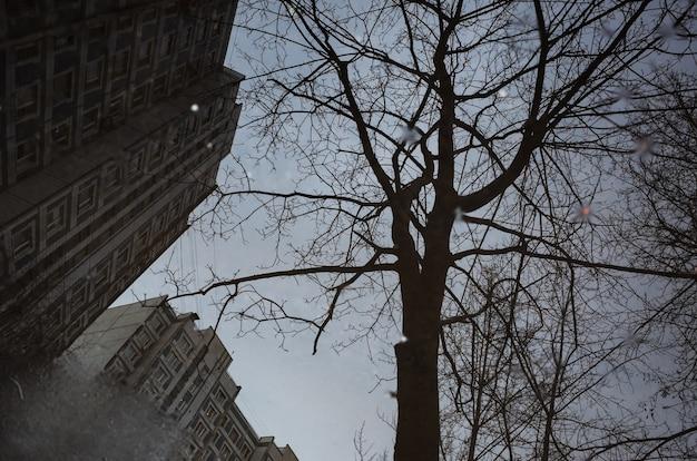 Gocce di pioggia che si increspano in una pozzanghera con il riflesso di edifici, cielo e alberi.