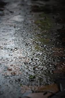 Gocce di pioggia che schizzano durante la caduta di pioggia dura di notte. messa a fuoco selettiva e profondità di campo ridotta.