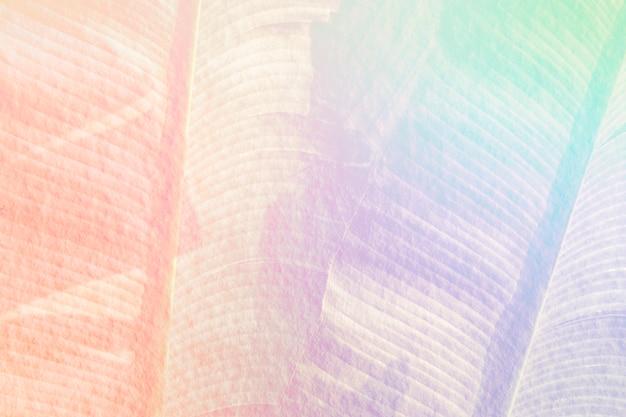Illustrazione di sfondo foglia di banana arcobaleno