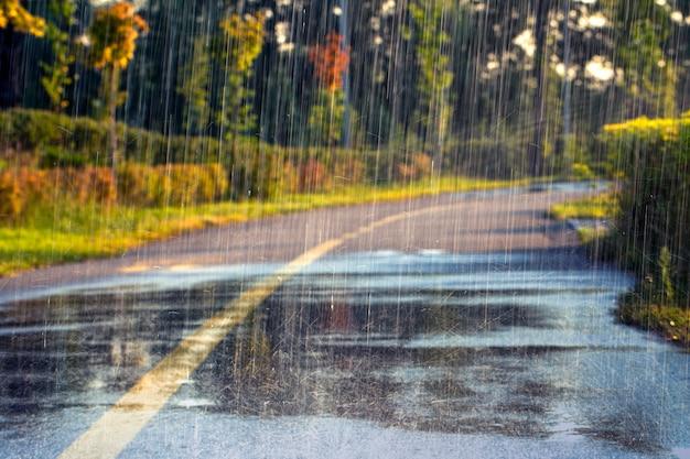 Fuoco selettivo del markup dell'asfalto delle gocce di pioggia sfondo da vicino