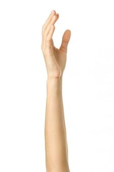 Mano o voto alzato. gesturing della mano della donna isolato su bianco
