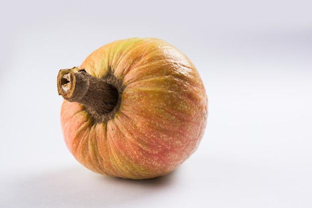Raro frutto medicinale ramphal o ram fal noto anche come annona reticulate o soursop in inglese, su sfondo lunatico, messa a fuoco selettiva