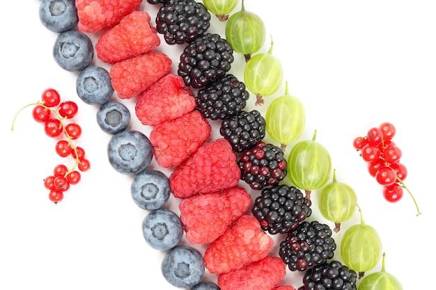 Lamponi, uva spina, more e mirtilli adagiati in diagonale su uno sfondo bianco. vitamina utile cibo sano