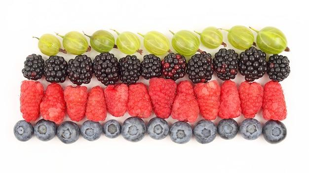 Lamponi, uva spina, more e mirtilli in righe su uno sfondo bianco. utile alimento vitaminico ai frutti di bosco