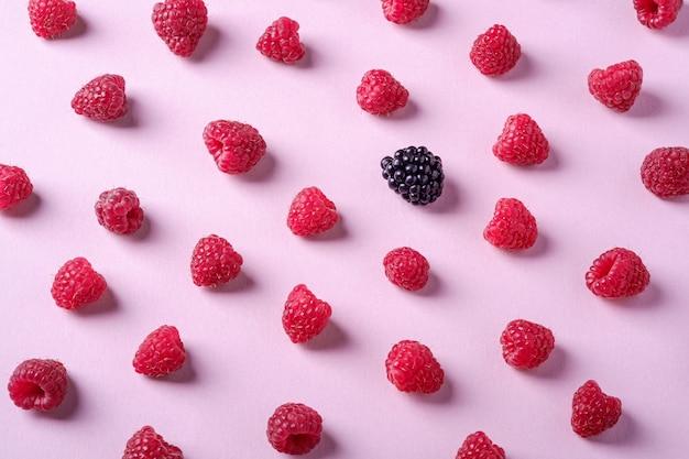 Bacche succose organiche dolci del lampone con la singola mora sul rosa