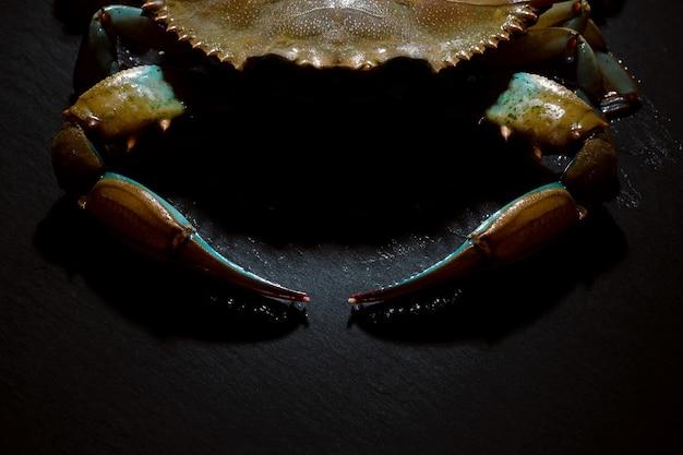 Granchio blu crudo su sfondo scuro, frutti di mare