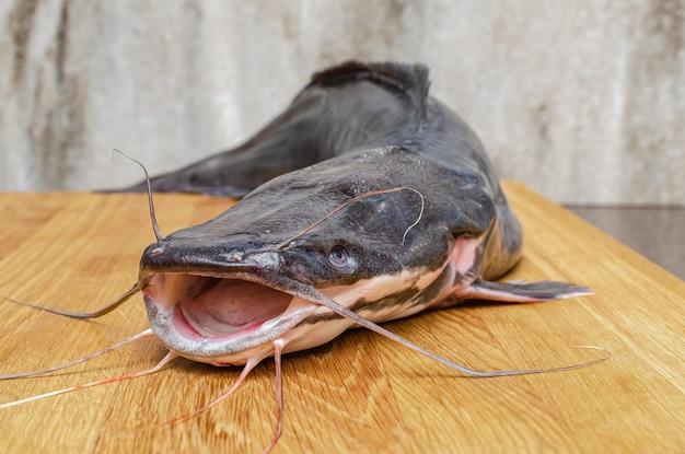 Pesce gatto crudo su un tagliere, cucinando il pesce.