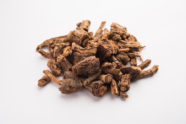 La salsapariglia ayurvedica indiana cruda essiccata viene utilizzata per il trattamento della psoriasi e delle malattie della pelle, dell'artrite reumatoide e delle malattie renali, messa a fuoco selettiva