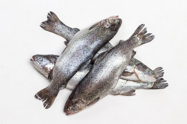 Trota di pesce crudo. lay piatto