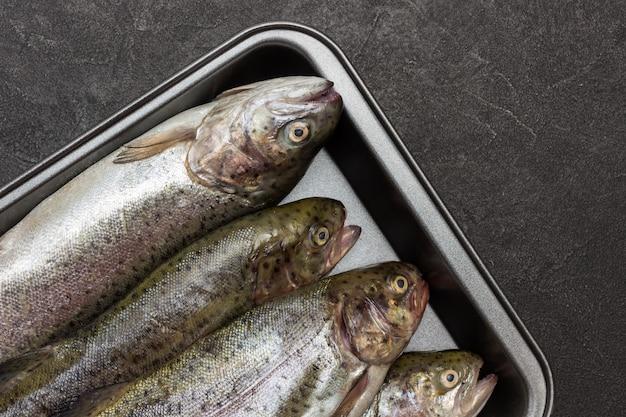 Trota di pesce crudo su vassoio di metallo. copia spazio. lay piatto