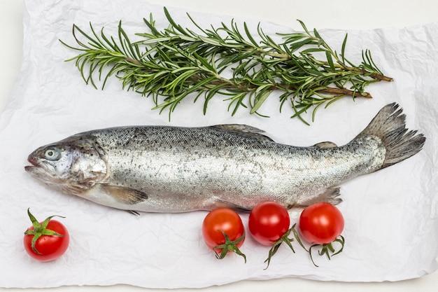 Trota di pesce crudo con pomodori e rametti di rosmarino su carta bianca. lay piatto